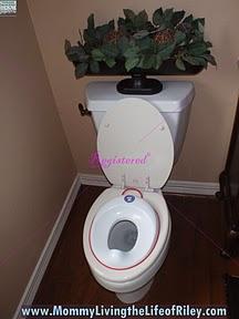 Baby Bjorn Toilet Trainer