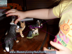 Riley Playing with Her Schleich Dog Figurines