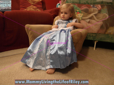 The Princess Dress Cinderella with Glovelets Dress