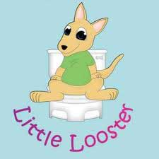 Little Looster