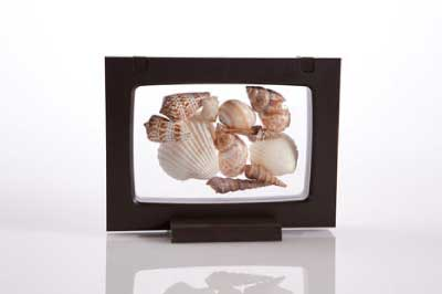 Z-Access DisplayIt3D Frame