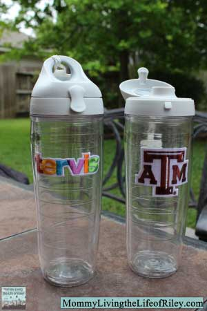 Tervis 24 oz. Insulated Water Bottle