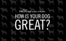 Purina ProPlan How is Your Dog Great?