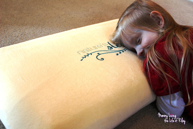 Nature's Sleep Memory Foam Pillow