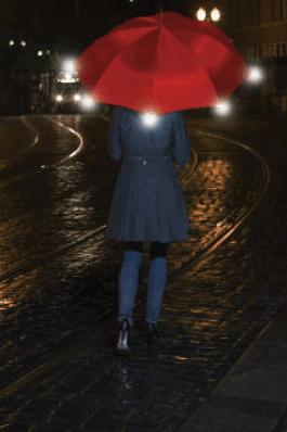 ShedRain WalkSafe Umbrella