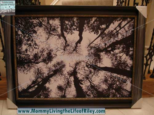 GalleryDirect.com Framed Wall Art - Standing High by Michael Joseph