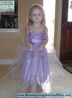 Magic Cabin Fairy Princess Dress