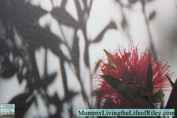 Gallery Direct Sara Abbott Shadow Branch Burst I