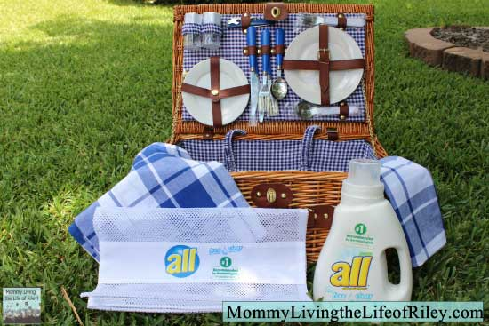 all free clear Allergen Removal Picnic Prize Pack