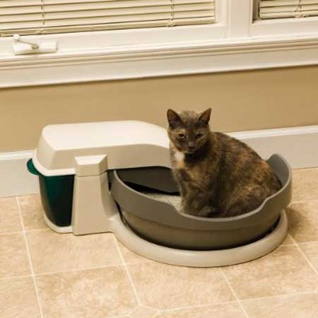 PetSafe Simply Clean Self-Cleaning Automatic Litter Box System